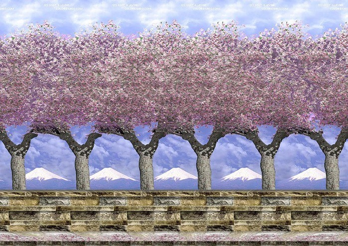 деревья 3д